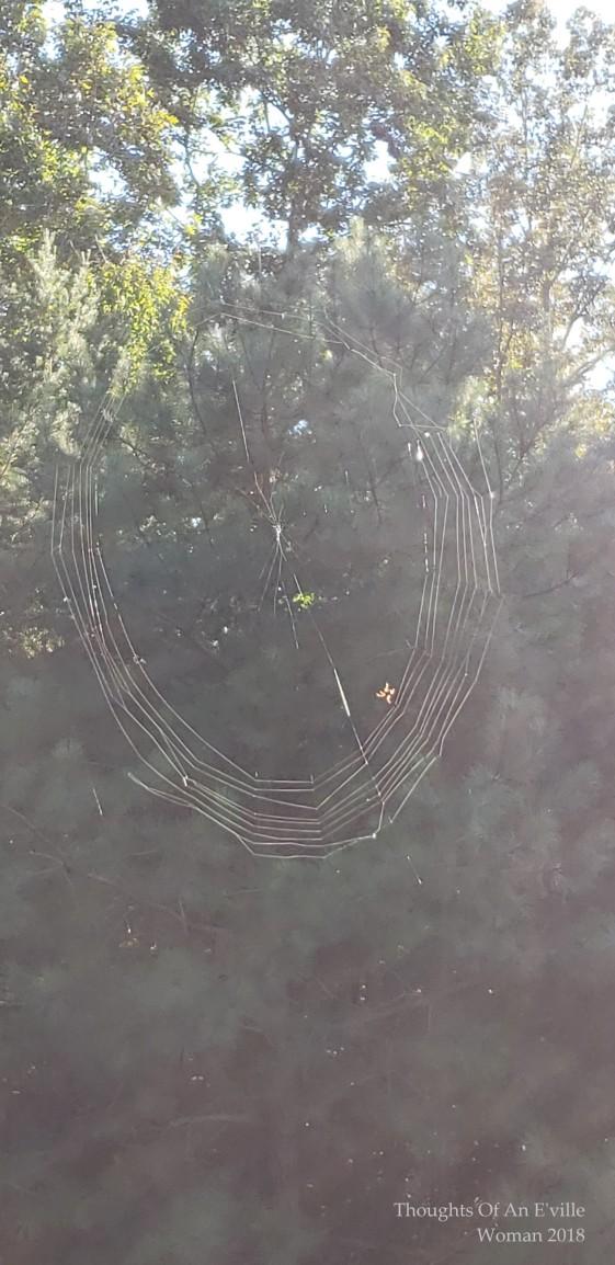 web 4a